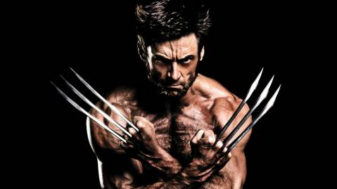 2013 the Wolverine